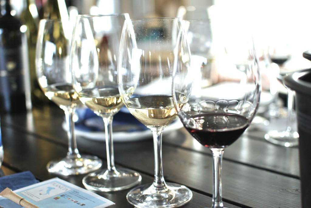 Lær å kjenne igjen de mest klassiske druetypene før du gjør dypdykket ned i vinens verden!
